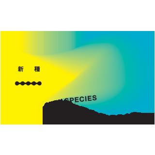 テクノロジーとクリエイティブの祭典『明星和楽2016』のまとめ記事と動画が完成